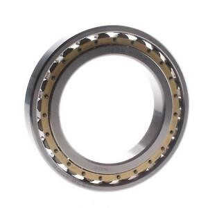 Cusc precisione a rulli cilindrici INA