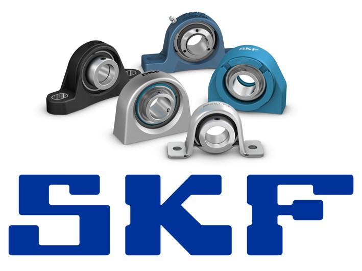 Supporti SKF